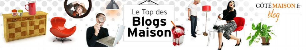 cropped-header_blog_maison2