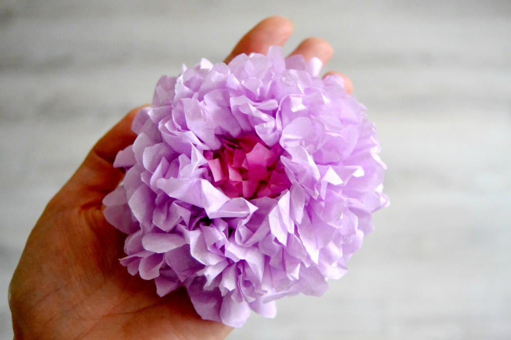Fleur en papier de soie (2)