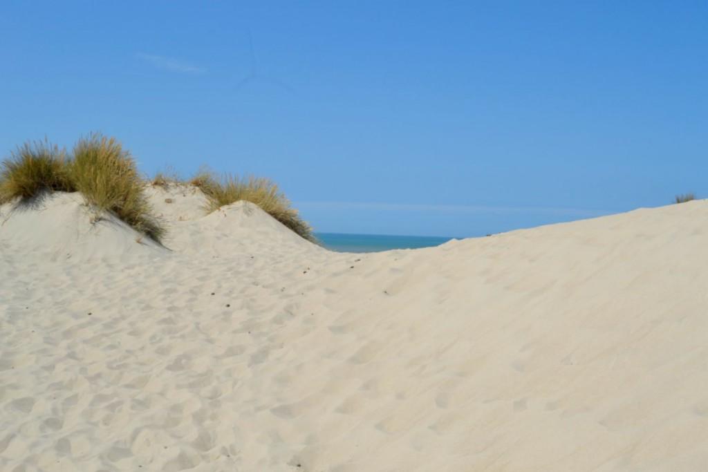 dunes côtes picardes