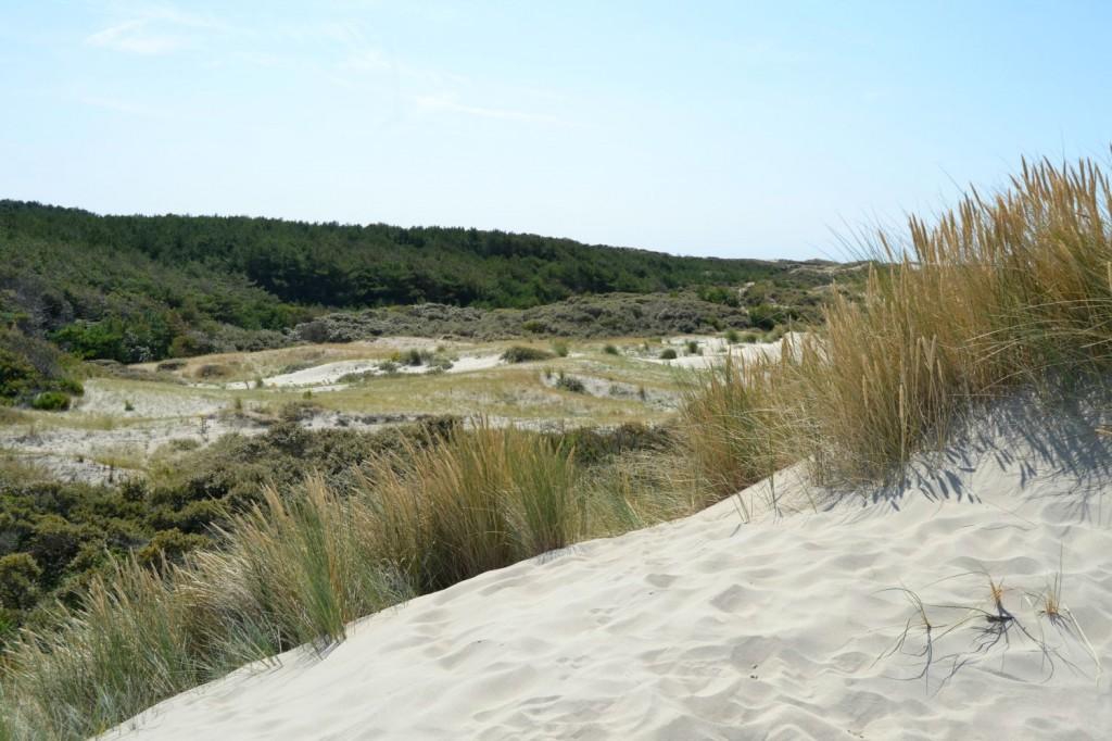 dunes plages picardie