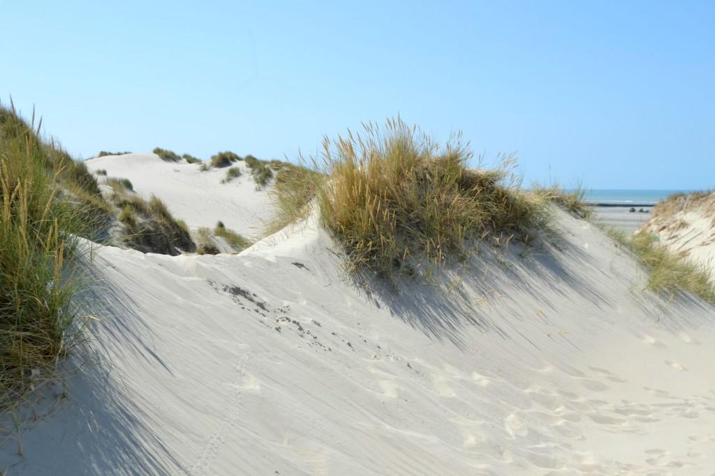sentier d'accès à la mer dunes
