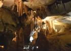 grotte de la Cocalière 5