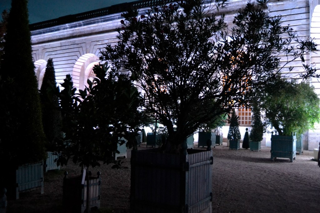 orangerie Versailles nuit