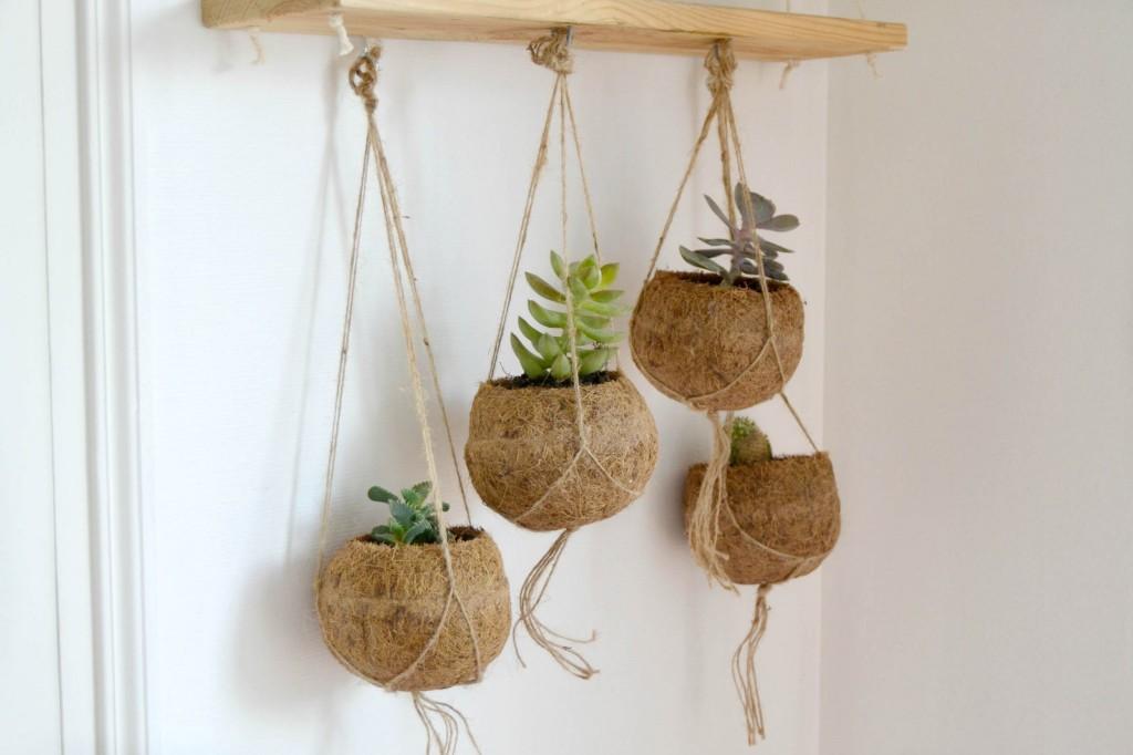 pots fibre végétale