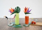 décoration apéritif tropical