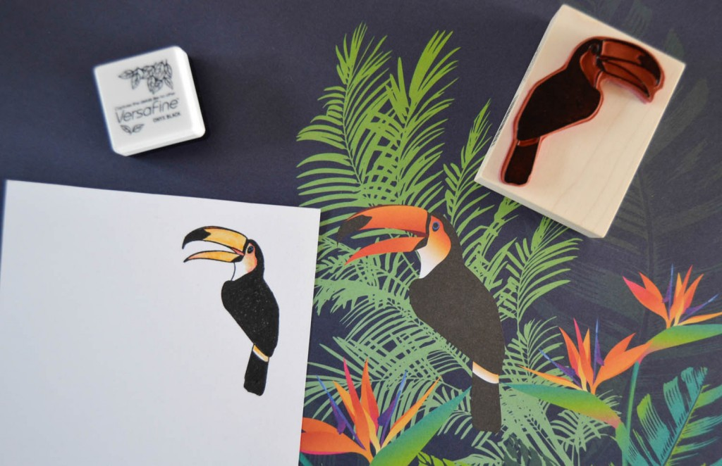 tampon toucan