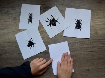 empreintes peinture insectes