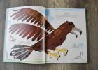 livre oiseaux