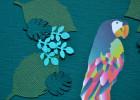 anniversaire aventurier perroquet