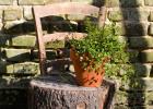 chaise rondin de bois