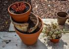 décoration avec des pots cassés_