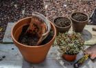 décoration pots cassés