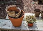 décoration pots cassés récup